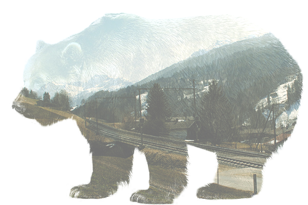 double exposure bear switzerland